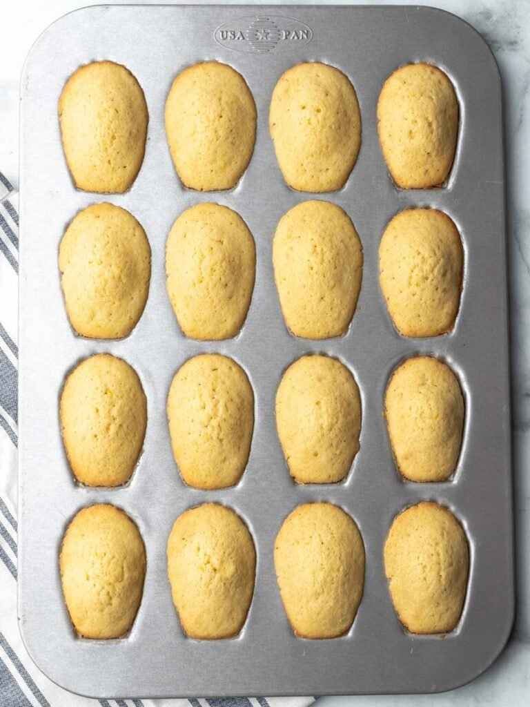 Baked Madeleines in a pan.